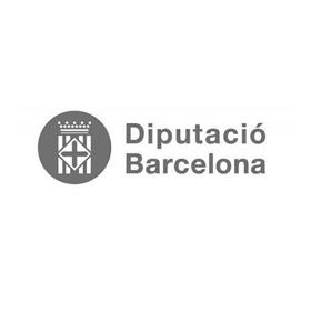 Cliente Snackson: DIPUTACIO-BARCELONA - microlearning, mobile learning, gamificación